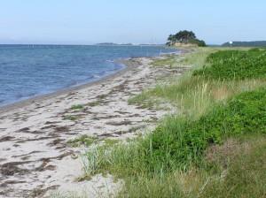 Der schönen Strand mit Ausblick zum Selhøj.