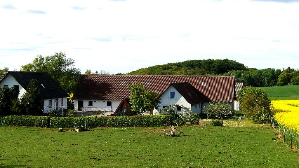 Haremosegård